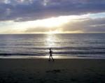 jogger_at_beach-r_200