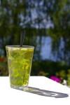 mint_tea-r_200