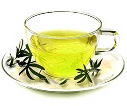 Green Tea Boost Your Metabolism and Burns Fat