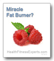 Is raspberry ketone miracle fat burner?