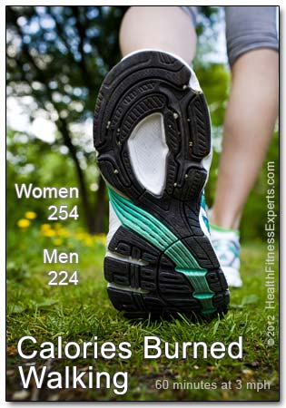 Calories Burned Walking